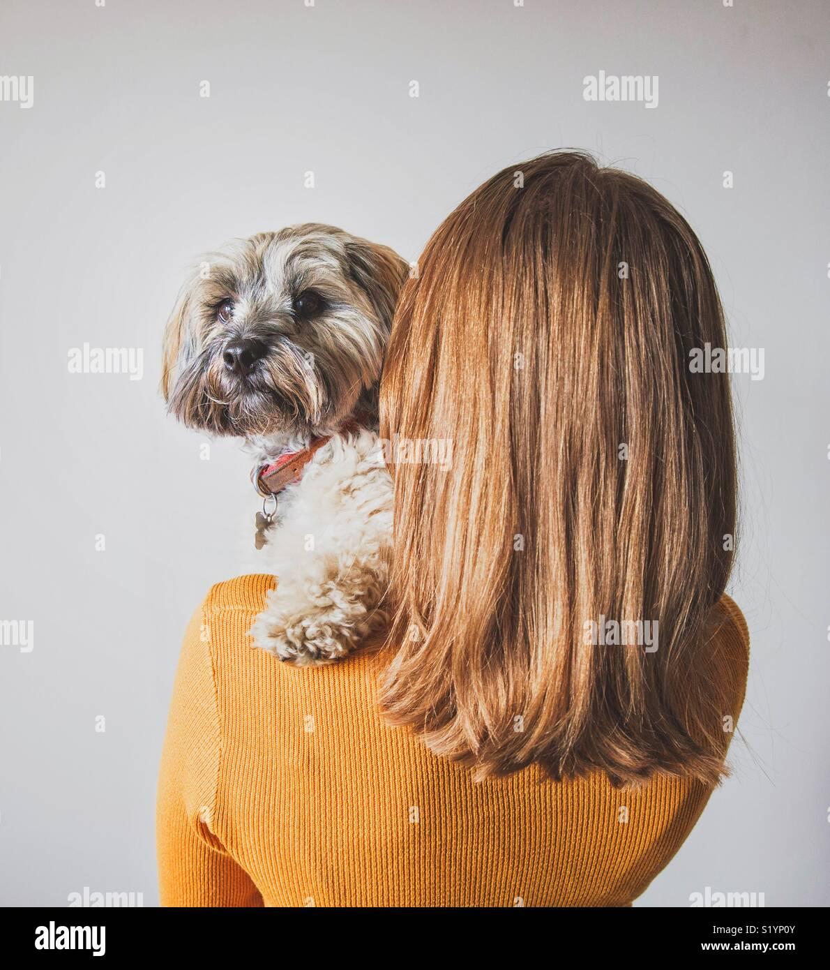 Vista trasera de una moda joven con un cabello brillante sosteniendo su lindo perro mascota sobre su hombro Imagen De Stock