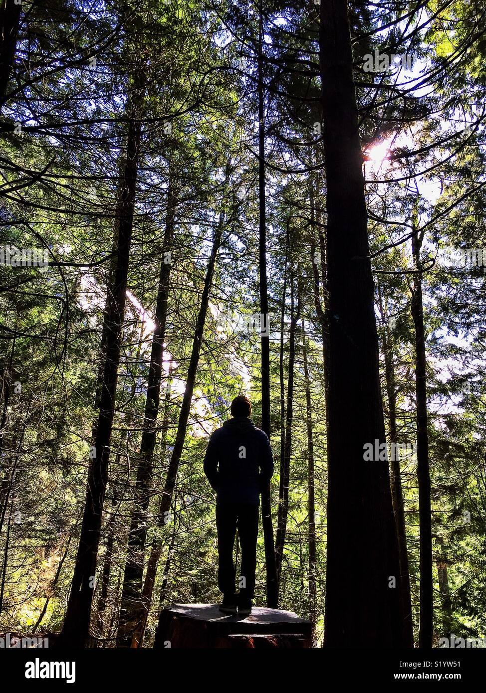 La gente es la naturaleza | América Sobre Ruedas Imagen De Stock