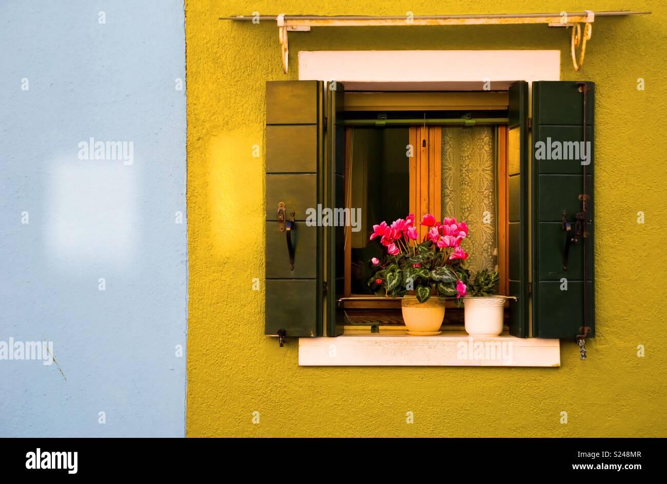 Ventana de Burano Imagen De Stock