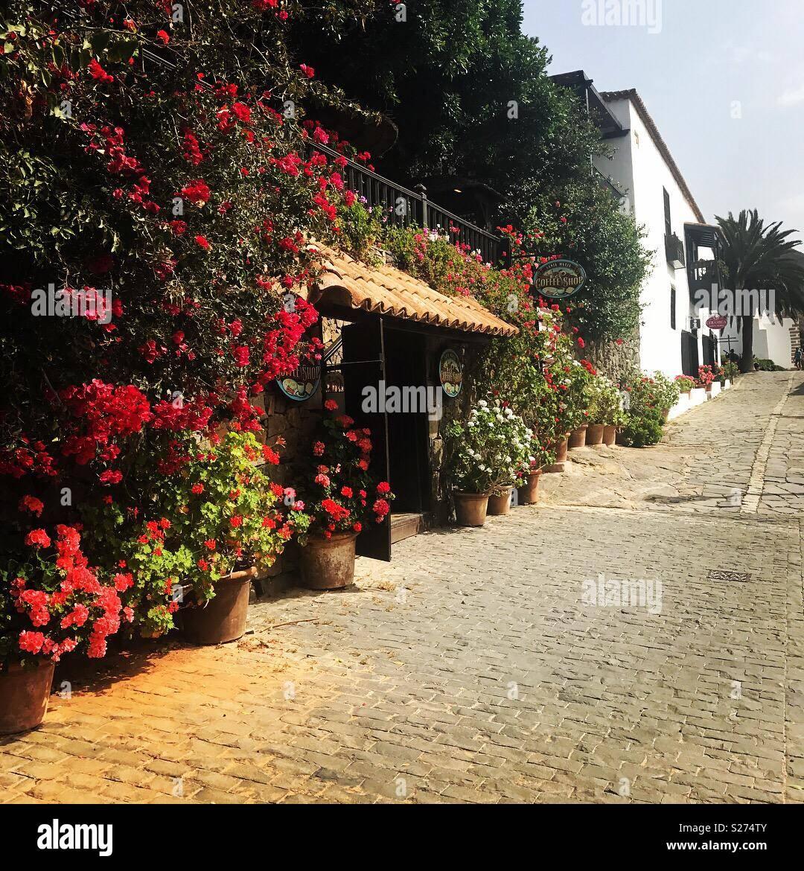 Calle en Fuerteventura Imagen De Stock