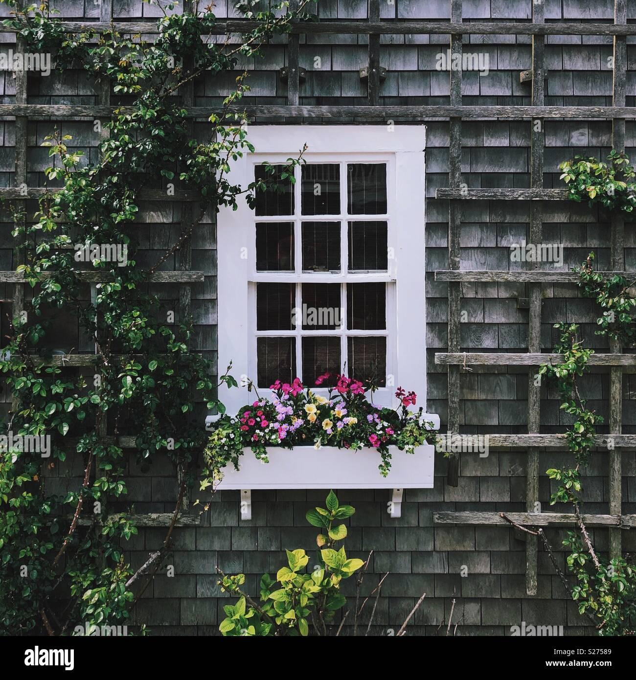 Nantucket Cottage Imagen De Stock