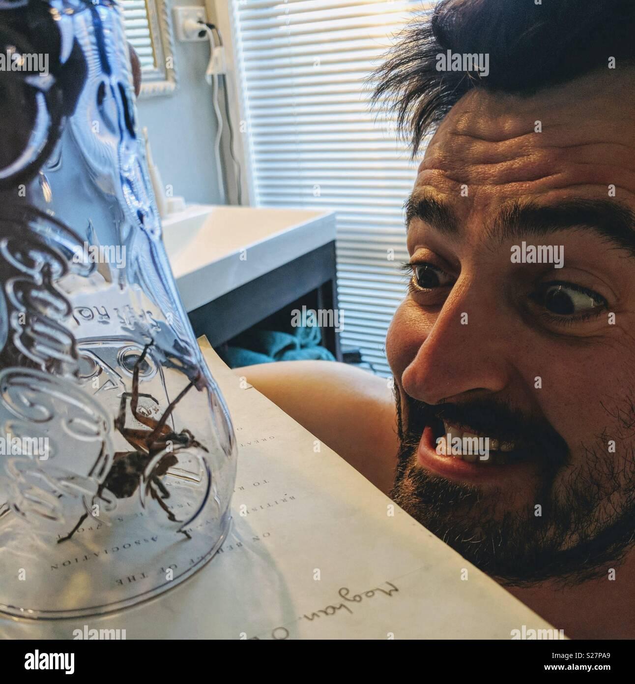 Spider Man vs Imagen De Stock
