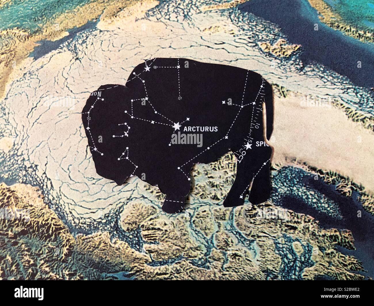 Corte papel buffalo y mapa. Imagen De Stock
