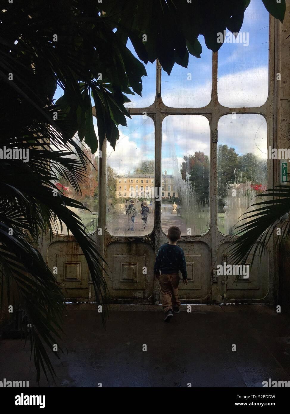 Niño en la Casa de las palmeras, los Jardines de Kew, Londres Imagen De Stock