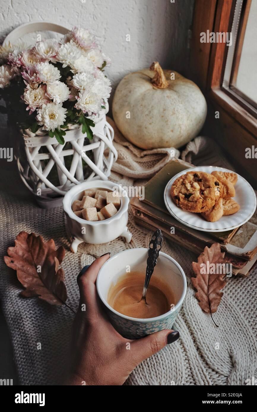Mañanas de otoño Foto de stock