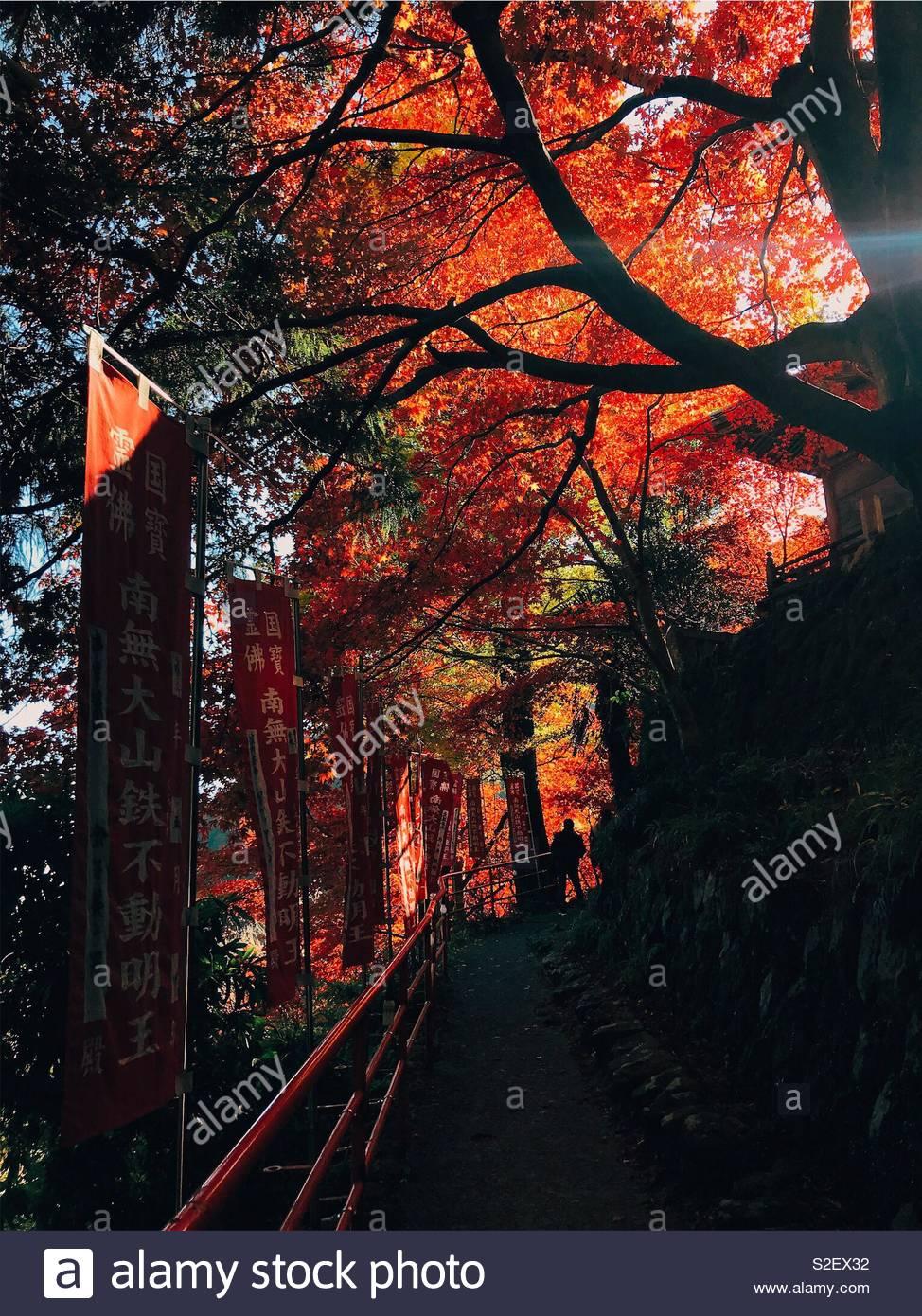 Ooyama Imagen De Stock