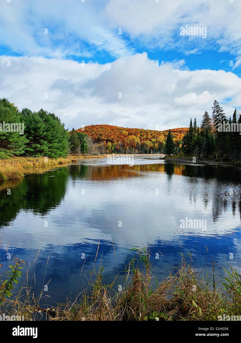 Pequeño lago o estanque que refleja el cielo y los colores de otoño en el norte de Ontario cottage country Foto de stock