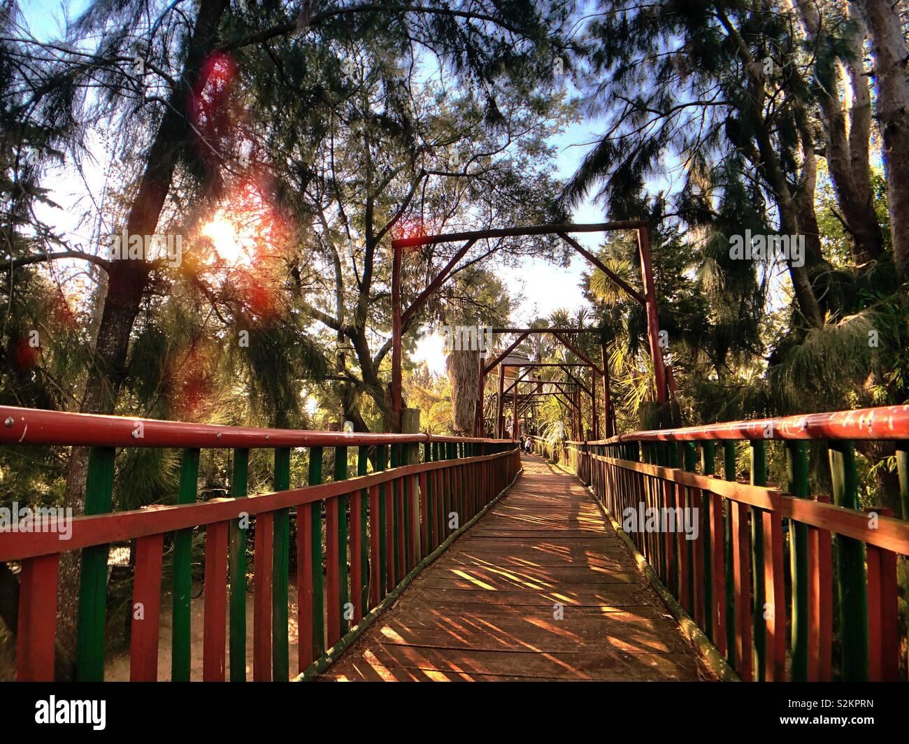 Domingo en el Parque Mizujo Foto de stock
