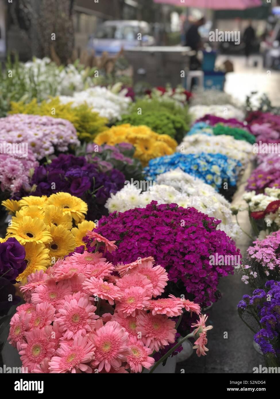 Flores no caminho Imagen De Stock