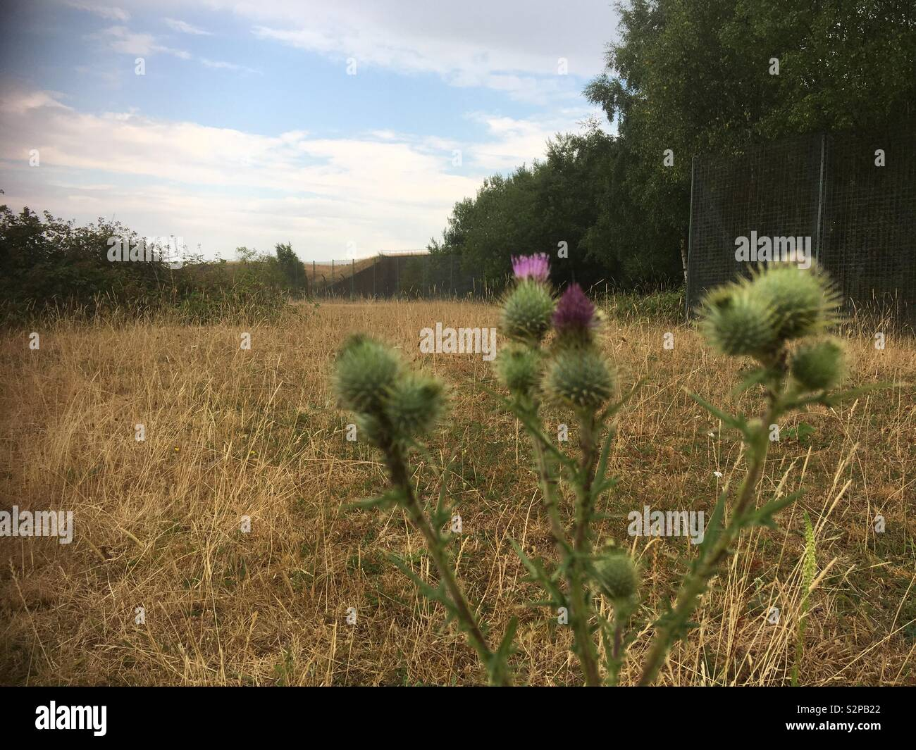 Greenham Common Imagen De Stock