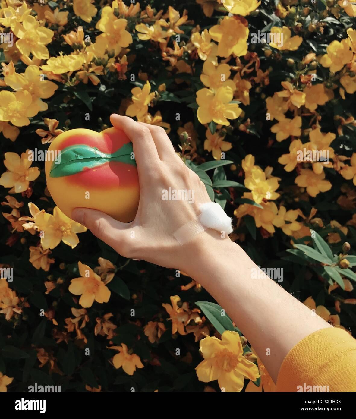 La mano después de la prueba de sangre Foto de stock