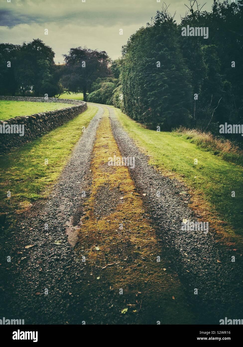 Vía carretera en campo. Foto de stock
