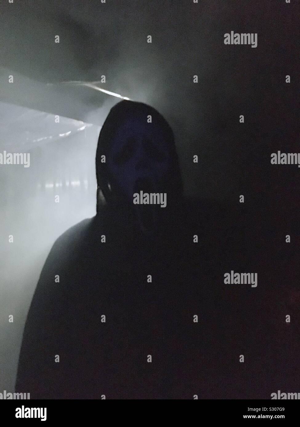 La noche de Halloween:sombra de miedo Foto de stock