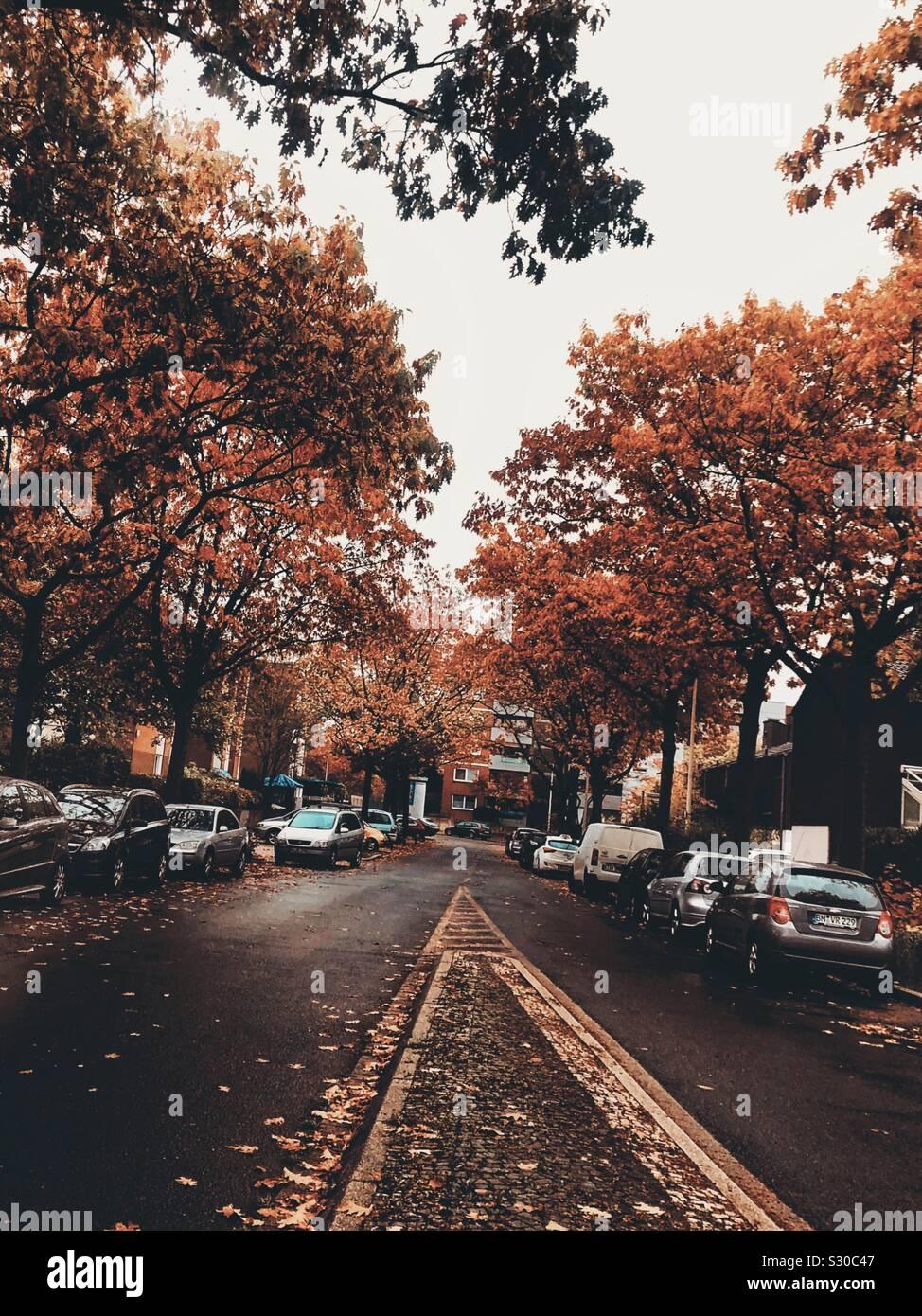 Calles en otoño Foto de stock