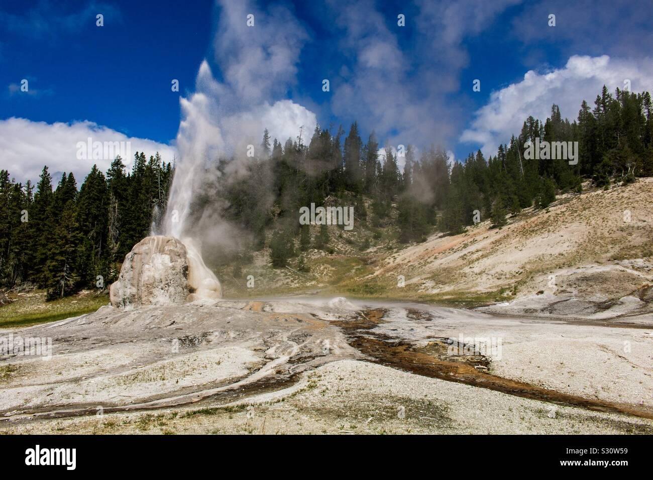 El Lone Star Geyser en el Parque Nacional de Yellowstone Foto de stock