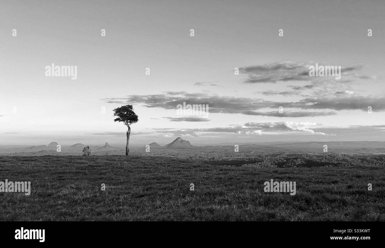 One Tree Hill Maleny Queensland Australia Foto de stock