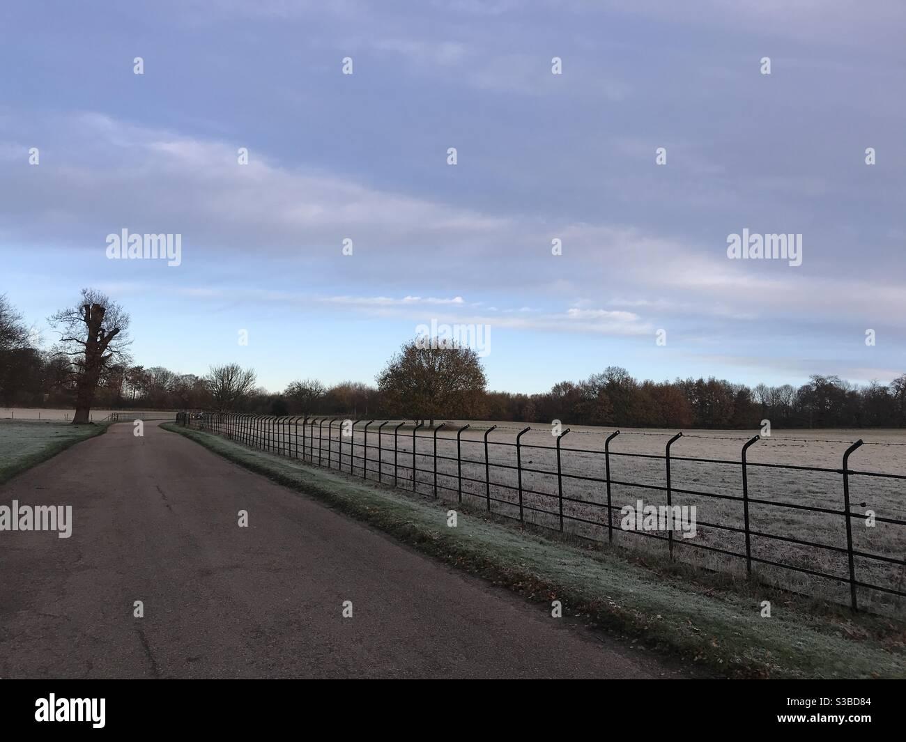 Heladas matutinas en el campo inglés Foto de stock