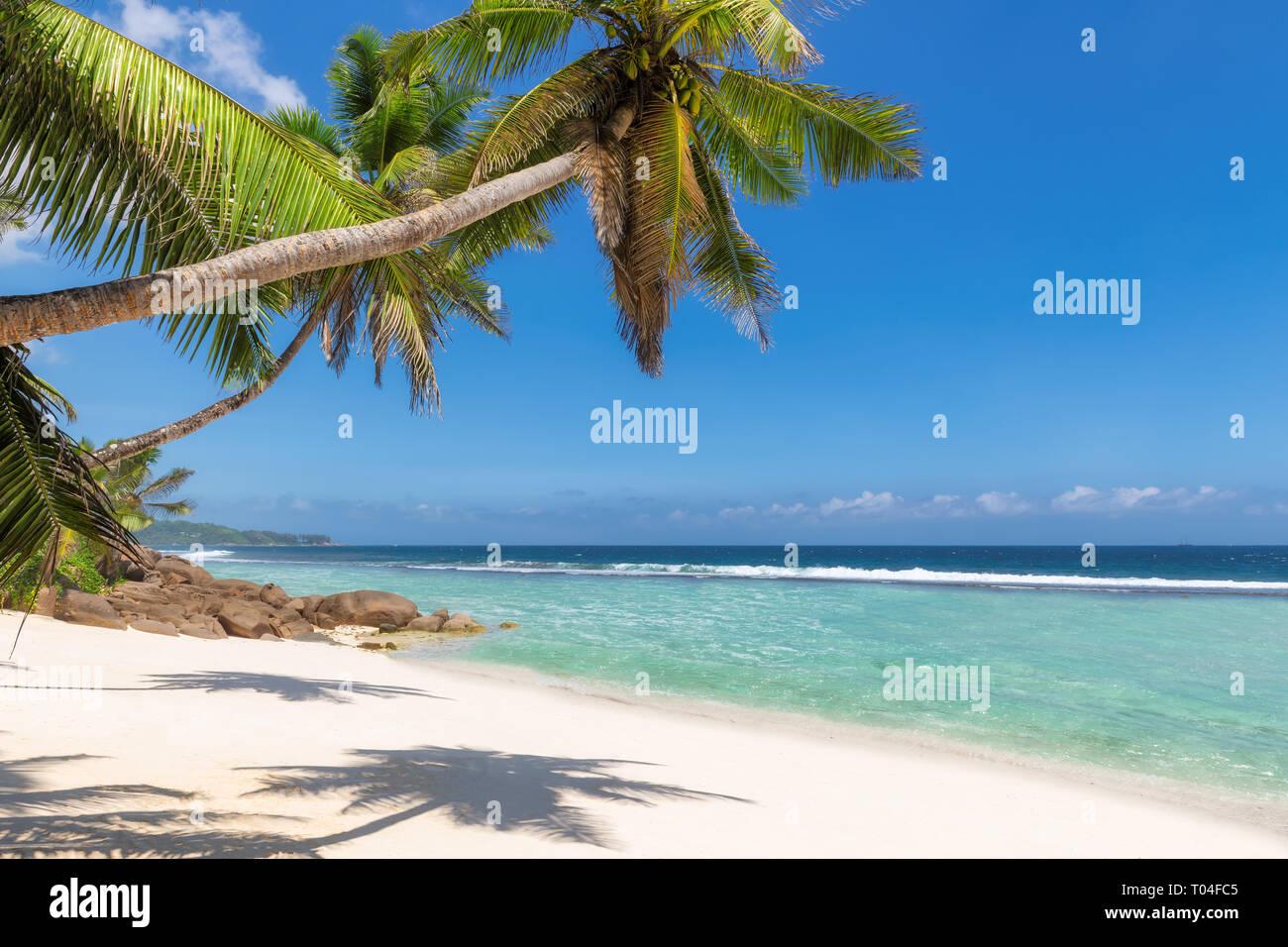 Sunny Beach en Seychelles exótica isla paraíso. Foto de stock