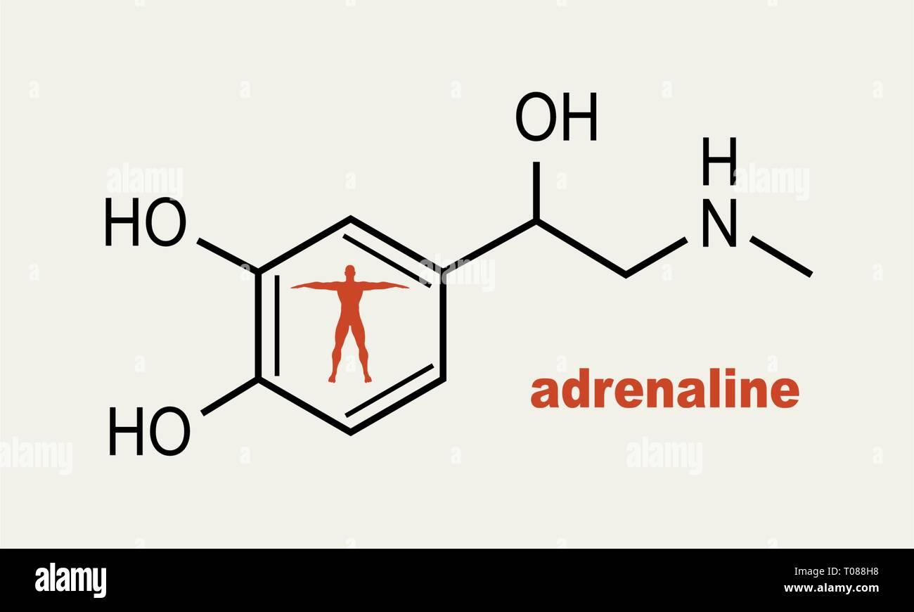 Fórmula hormona adrenalina. Imagen De Stock