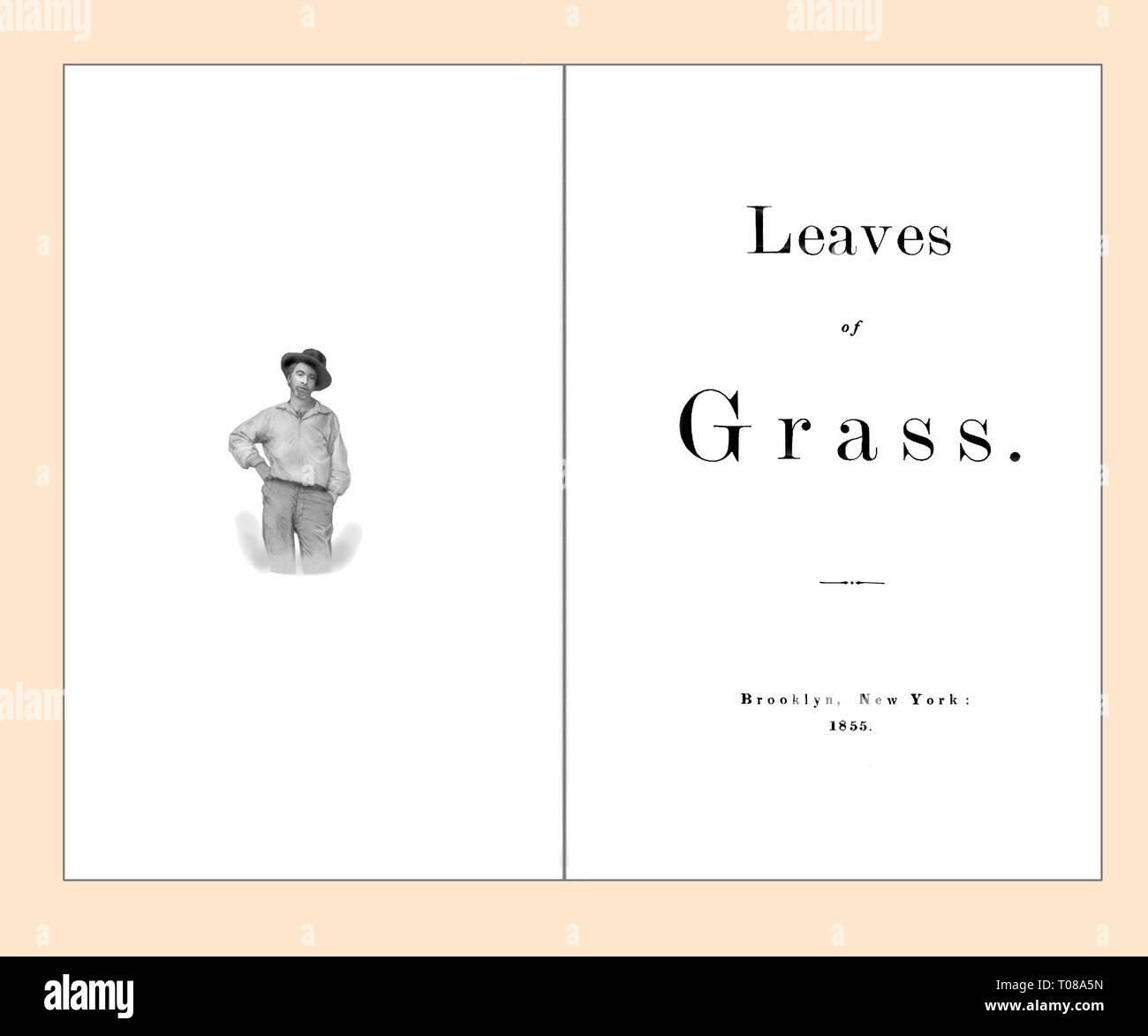 Página de título y frontispicio de hojas de hierba de Walt Whitman limpiado y re-set Foto de stock
