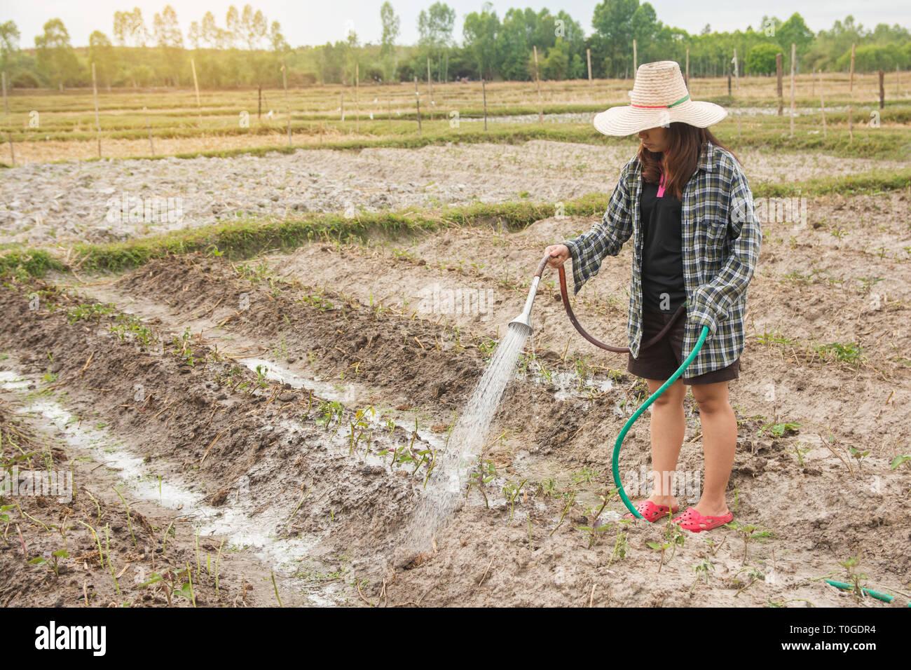TEMA FLOOD - Página 7 Mujer-jardinero-regando-las-verduras-en-su-jardin-t0gdr4