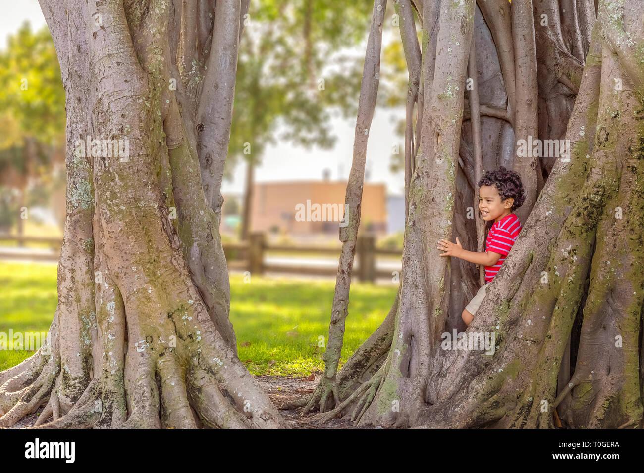 El chico sale de la clandestinidad junto con una sonrisa. Jugando al escondite en el parque, el chico se esconde en el Banyan tree grandes raíces. Foto de stock