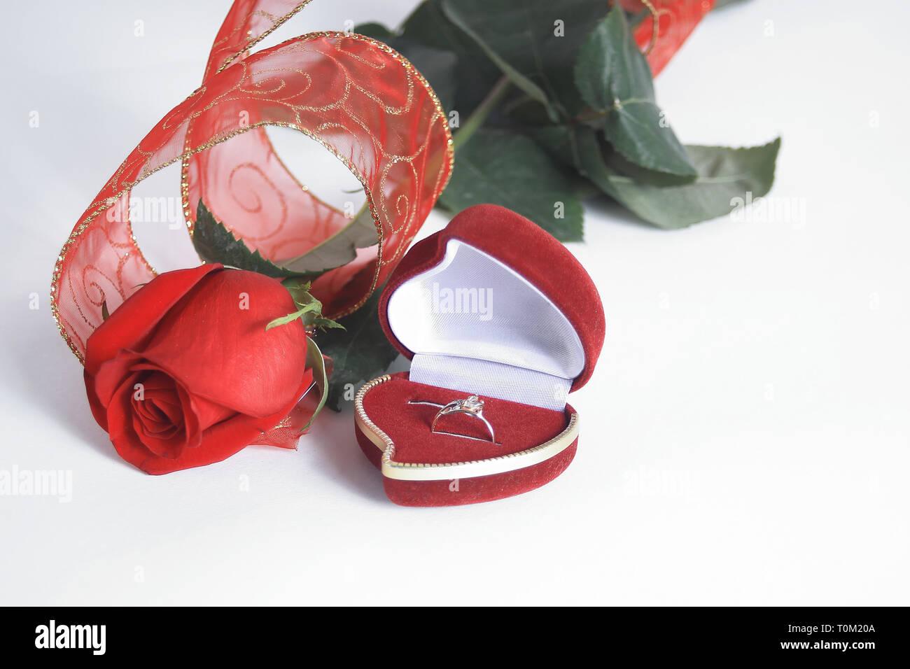 13ea10158cb Anillos de boda y rosa roja sobre fondo blanco.foto con espacio de copia  Imagen