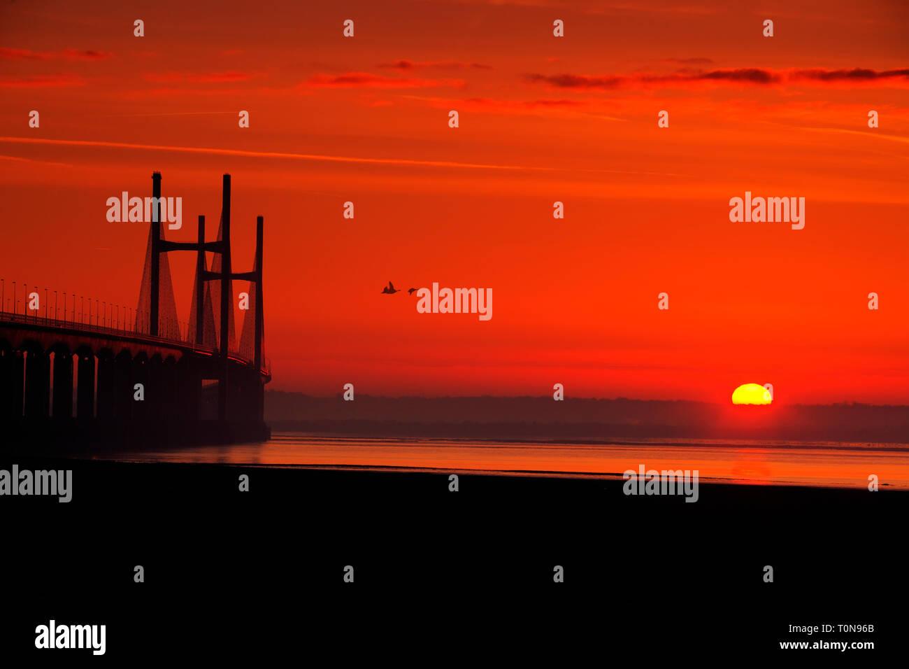 Gran Bretaña, Gales, río Severn. Severn Bridge y gansos en Sunrise, montando uno de los mayores rangos de marea en el mundo. Foto de stock