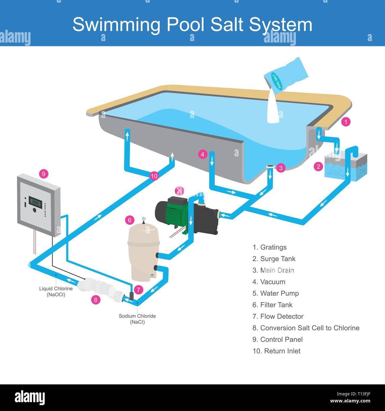 El sistema de filtro de agua en la piscina que utiliza la sal es una sustancia química que hace que el agua clara, por utilizar electrodos celda cambiando al cloro. Infografía i Ilustración del Vector