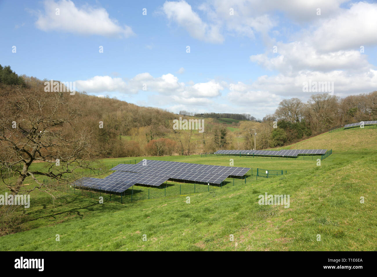 Paneles solares en la campiña británica. Imagen De Stock