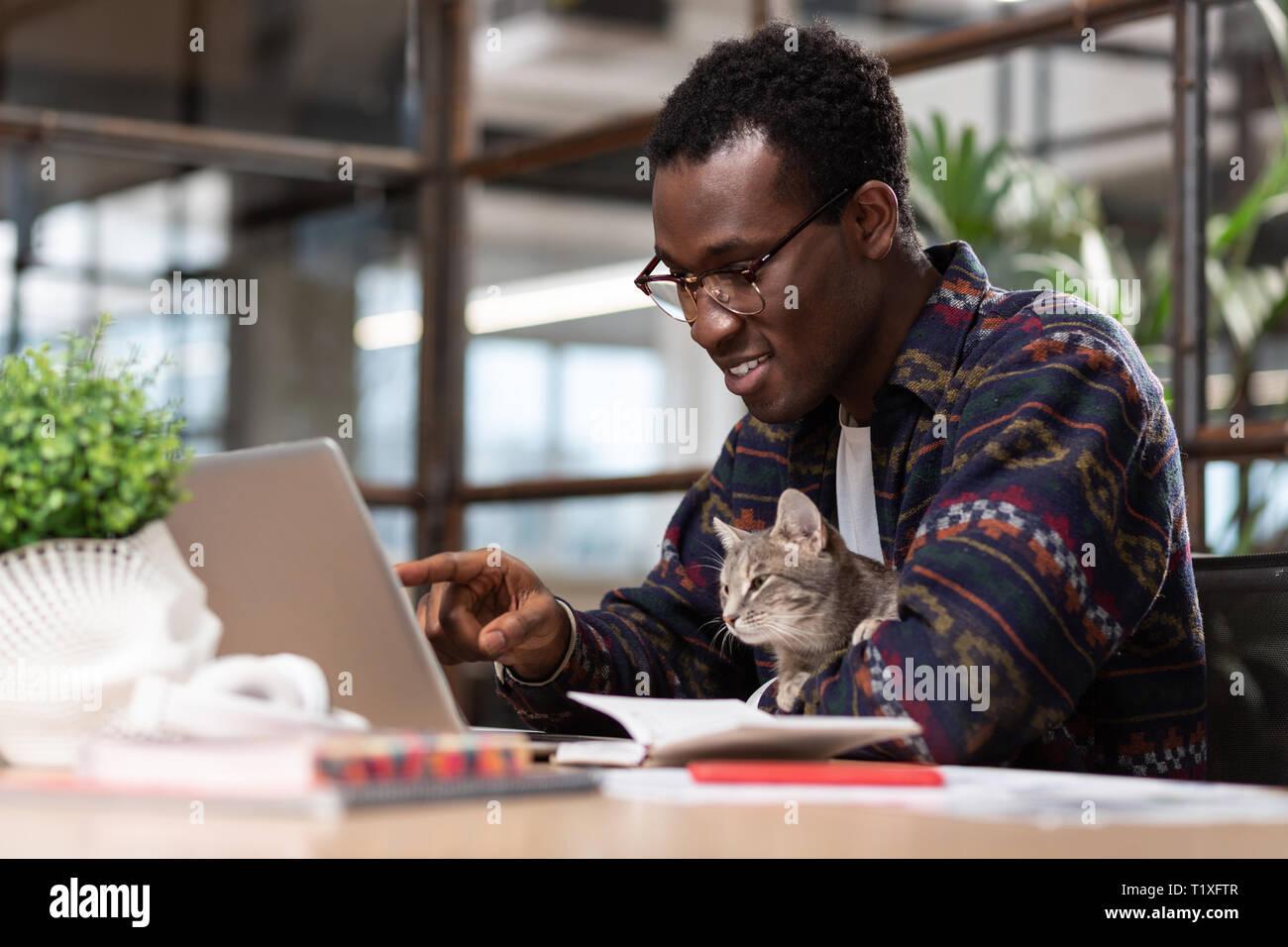 Hombre trabajando junto con su gato gris Foto de stock