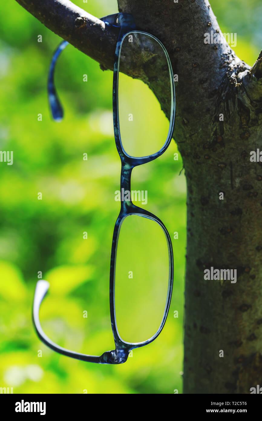 e8334056eb Gafas de estilo moderno colgando de una rama de árbol. Hermosa optometría  gafas de fondo