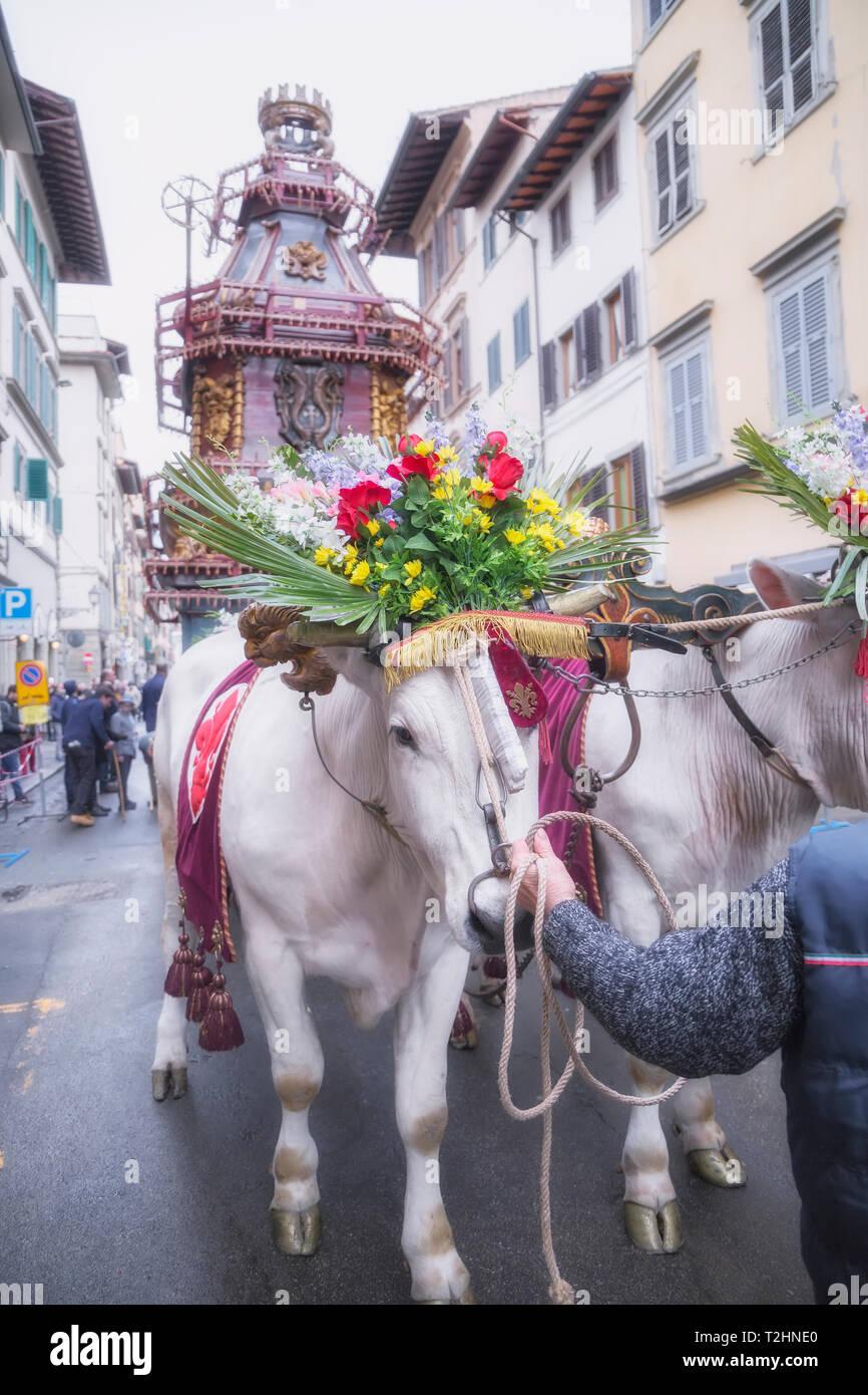 Una carreta de bueyes por la explosión del carro festival (El Estallido del Carro ) donde el Domingo de Pascua un carro de la pirotecnia está encendido, Florencia, Toscana, Italia Imagen De Stock