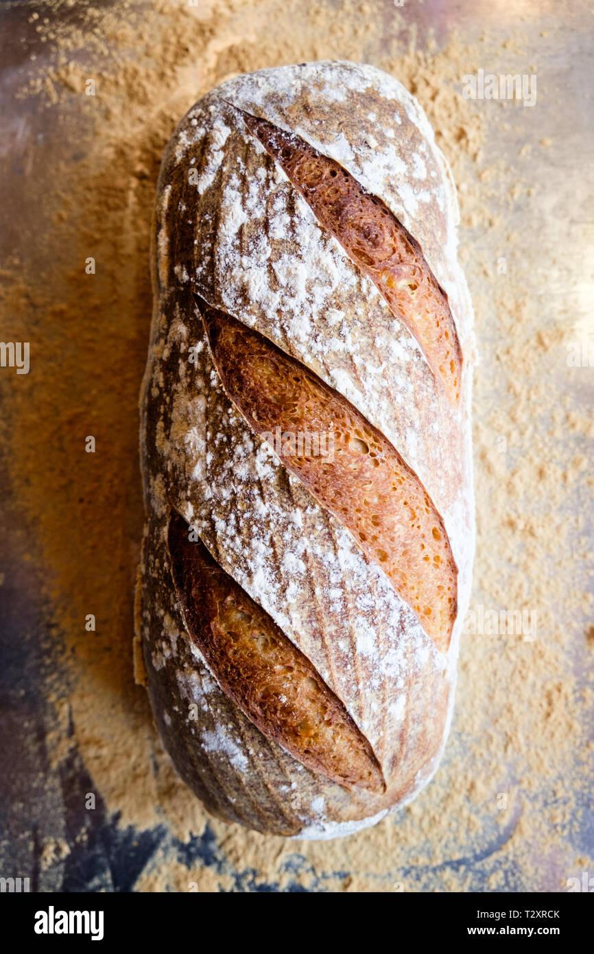 Una hogaza de pan de masa fermentada caseros en una bandeja para hornear. Foto de stock