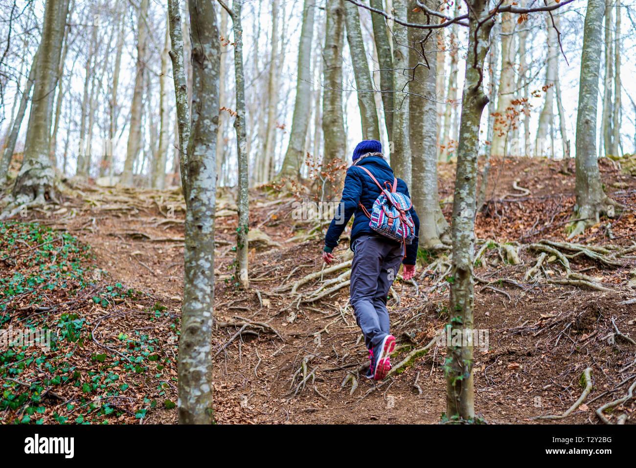 Vista posterior de la mujer caminando en el bosque Foto de stock