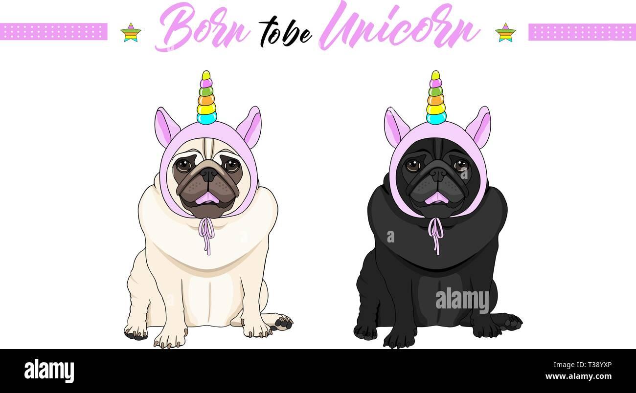 Lindo vector negro y leonado cachorro perros pug sentado, vistiendo rosa capó con cuerno de unicornio con los colores del arco iris Ilustración del Vector