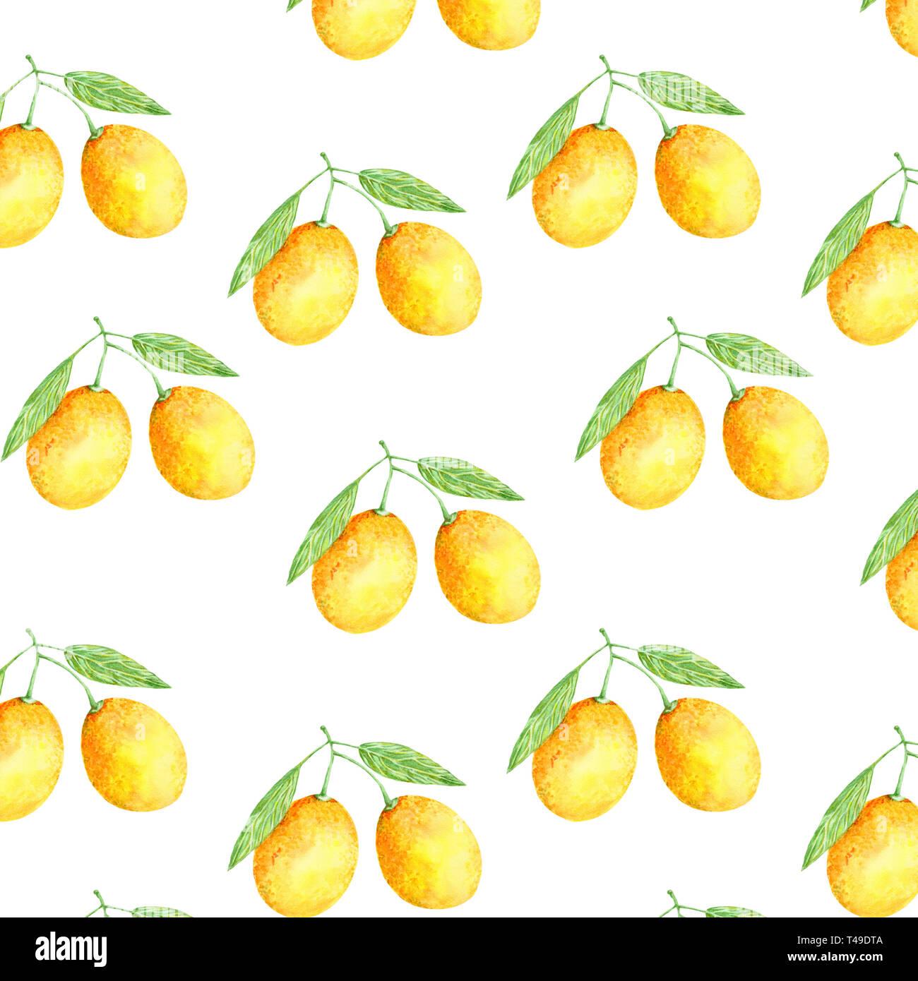 Acuarela de frutas de naranja. Ilustración fresco arte dibujado a mano de pintura color elemento jugoso sobre fondo blanco. Imagen De Stock