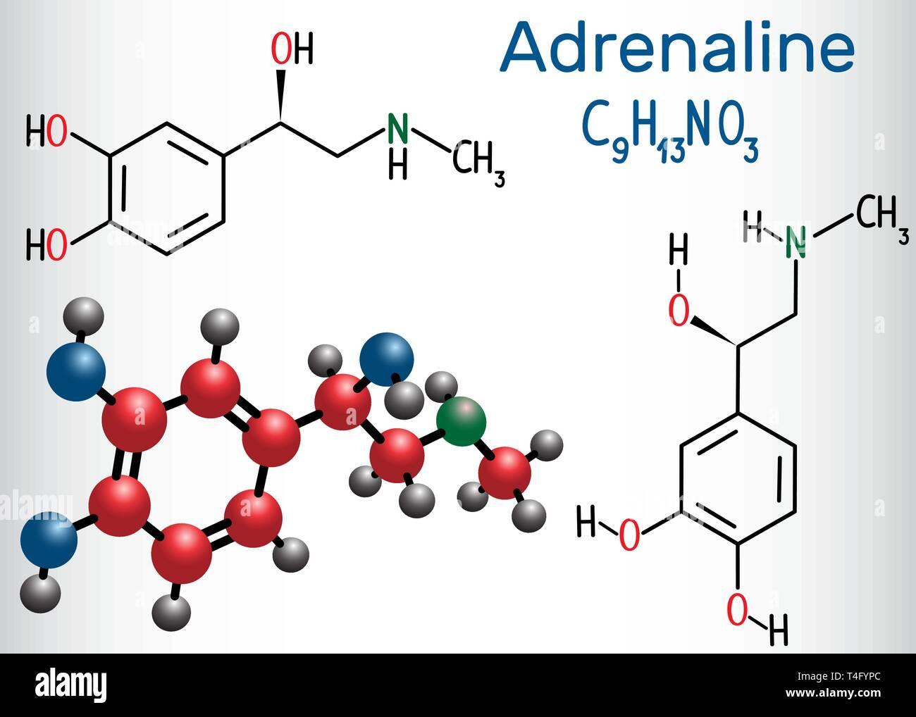 Molécula De Adrenalina Epinefrina Es Una Hormona