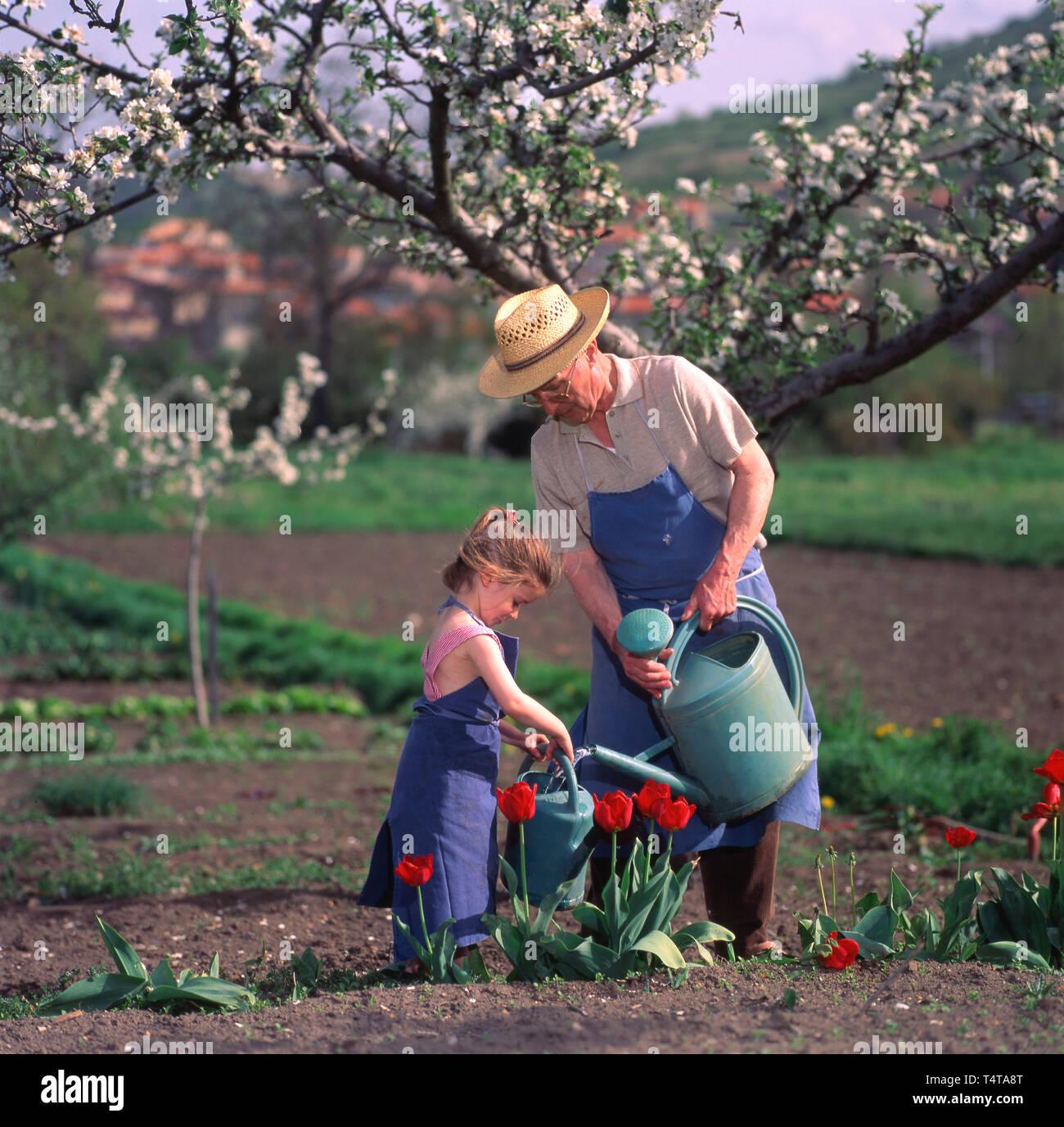 Mi abuelo y su pequeña hija regar las flores en el jardín Foto de stock