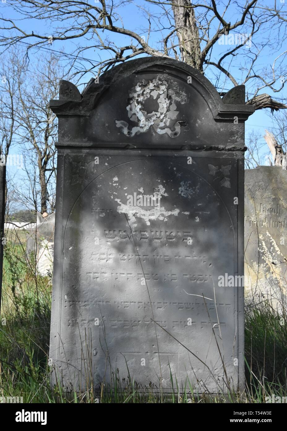 Scinawa, Polska. 21 abr, 2019. En Scinawa descuidado cementerio judío en Polonia. Hay muchos de estos cementerios en Polonia. Las autoridades locales sólo siegue la hierba, y es ahí donde el lugar cuidados relacionados con los judíos que vivían en Scinawa antes de que termine la guerra Crédito: Piotr Twardysko-Wierzbicki/Zuma alambre/Alamy Live News Imagen De Stock