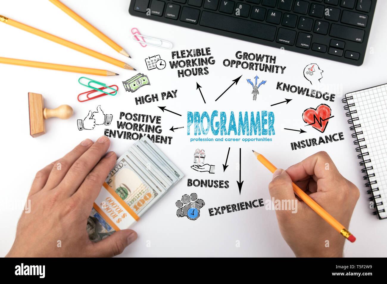 La profesión de programador y oportunidades de carrera. Gráfico con iconos y palabras clave Foto de stock