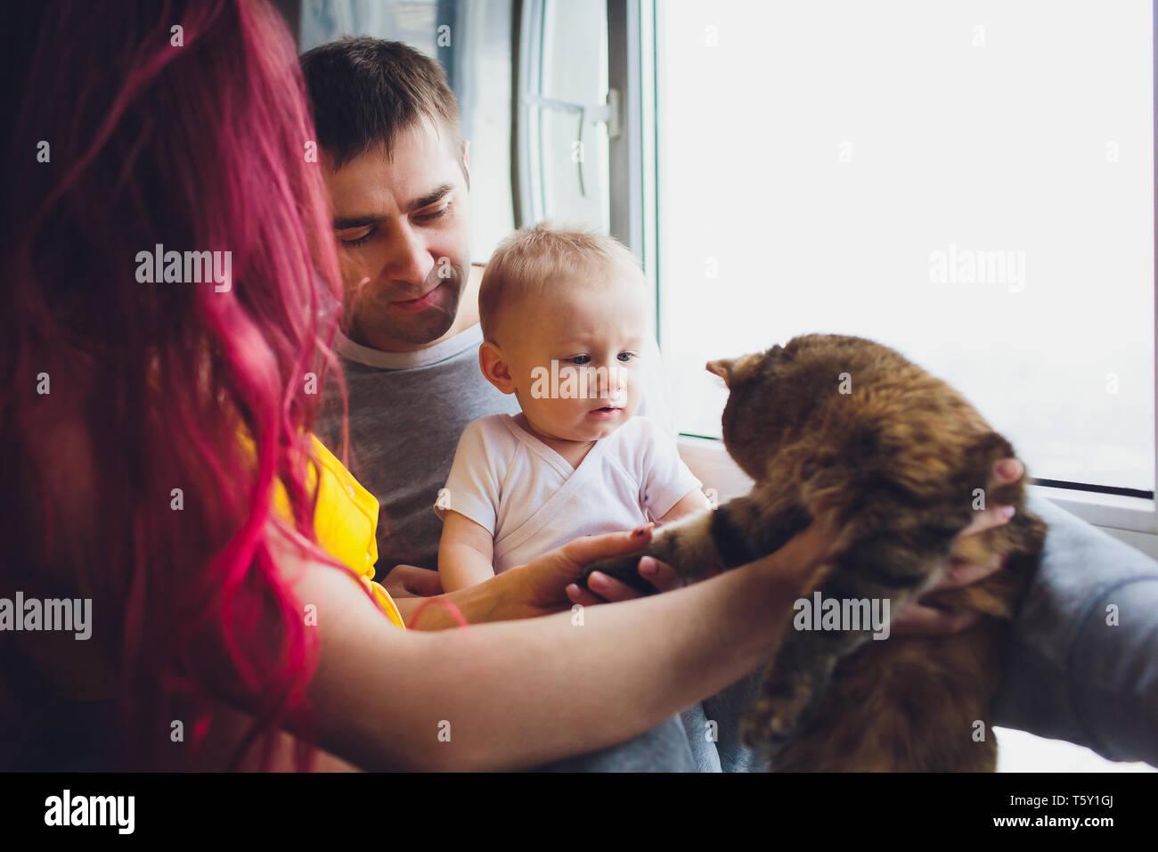 El padre y la madre joven jugando con su hijo y los gatos. Foto de stock