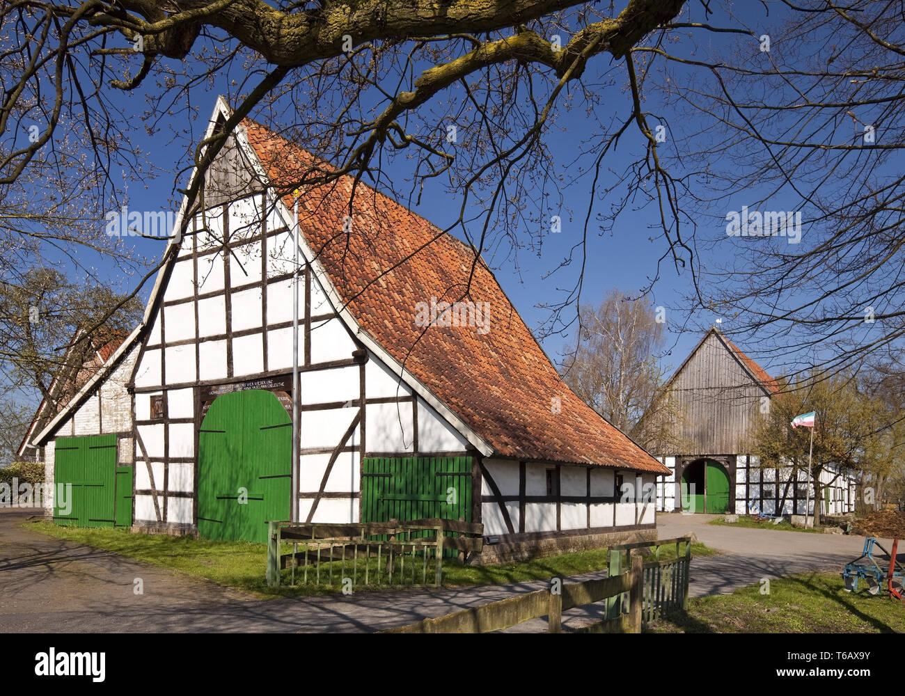 Casa de labranza enmarcadas en madera, Dollberg, Ahlen Village, Muensterland, Renania del Norte-Westfalia, Alemania Imagen De Stock