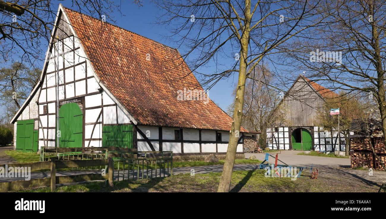 Casas de entramado de madera del cultivo, Dollberg, Ahlen Village, Muensterland, Renania del Norte-Westfalia, Alemania Imagen De Stock