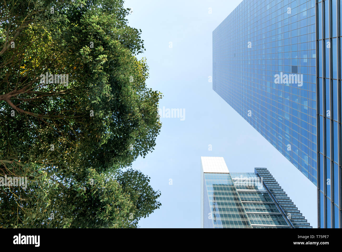 El paisaje en el centro de la ciudad, fondo comercial moderna. Un día soleado. Foto de stock