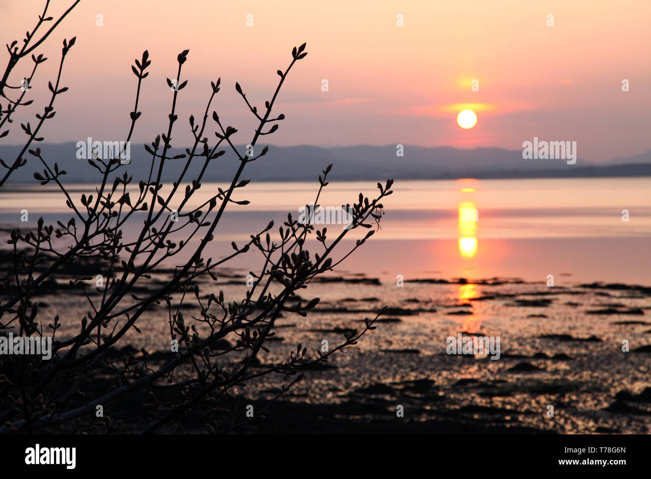 Hermoso atardecer dorado con reflejos del sol en aguas tranquilas Foto de stock