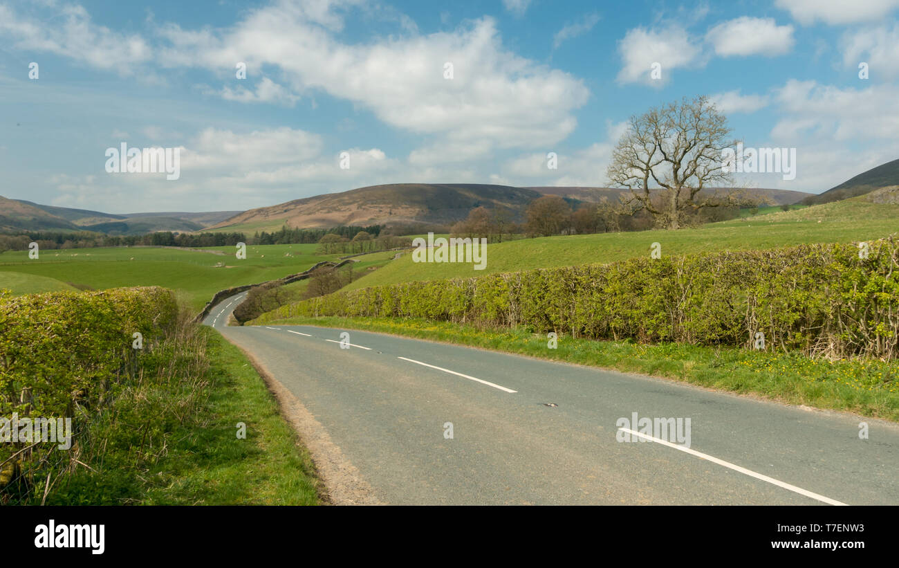 Vista panorámica del pintoresco paisaje en la B6478 country road entre Newton en Bowland y Dunsop Puente, Bosque de Bowland Foto de stock