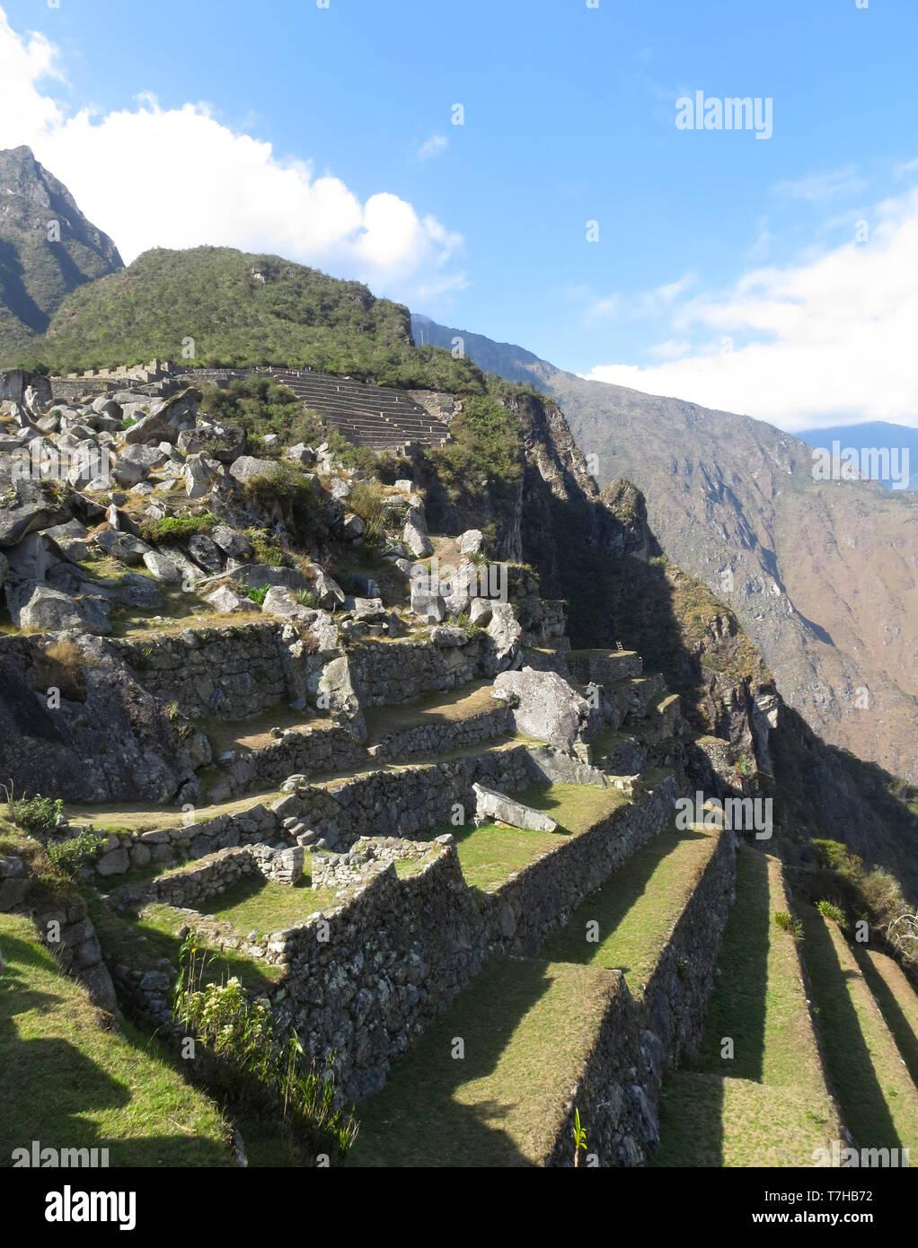 Tierras De Cultivo En Terrazas De Machu Picchu En La Región