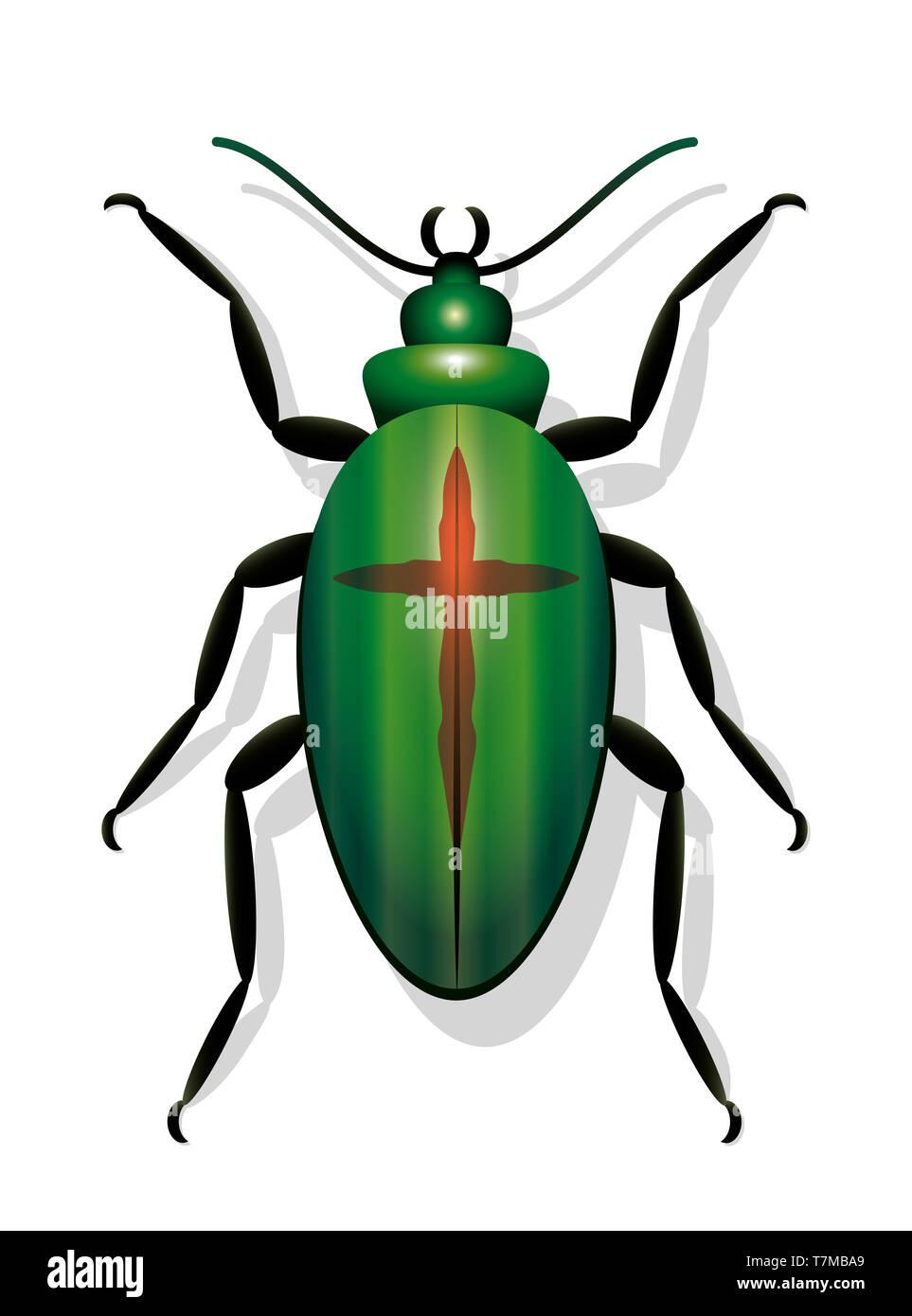 Beetle con cruz, simbólico por la extinción de especies y a la disminución de las poblaciones de insectos - Ilustración sobre fondo blanco. Imagen De Stock
