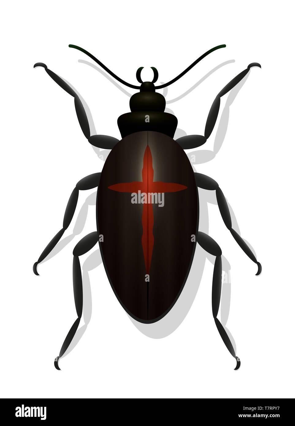 Bug negro con una cruz roja. Escarabajo de la viuda negra. Simbólico por peligrosos, tóxicos, los insectos venenosos o de la disminución de las poblaciones de insectos. Imagen De Stock